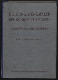 Die Kunstdenkmäler von Oberpfalz & Regensburg. H. 5, Bezirksamt Burglengenfeld