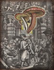 Theatrum fungorum oft het tooneel der campernoelien ... beschreve door Franciscus van Sterbeeck