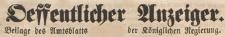 Oeffentlicher Anzeiger : Beilage des Amtsblatt der Königlichen Regierung, 1869.12.22 nr 51